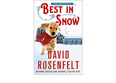 Best In Snow - Andy Carpenter Series